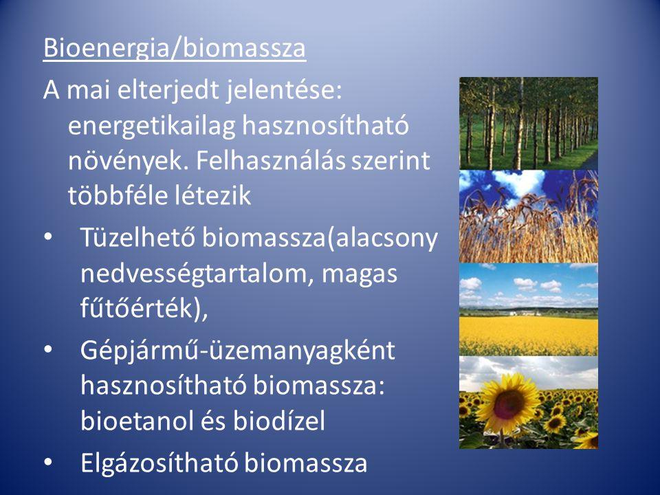 Bioenergia/biomassza A mai elterjedt jelentése: energetikailag hasznosítható növények. Felhasználás szerint többféle létezik Tüzelhető biomassza(alacs