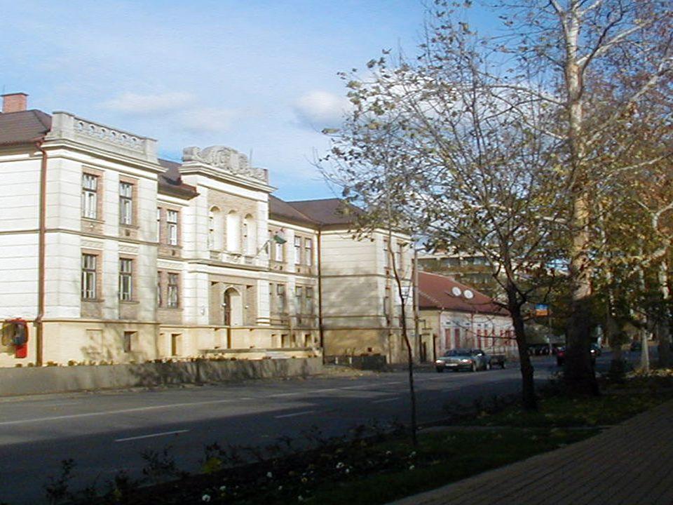 A kollégium épülete Kossuth u.133.