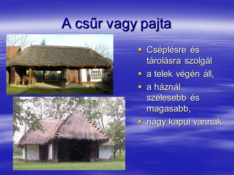 A csűr vagy pajta  Cséplésre és tárolásra szolgál  a telek végén áll,  a háznál szélesebb és magasabb,  nagy kapui vannak