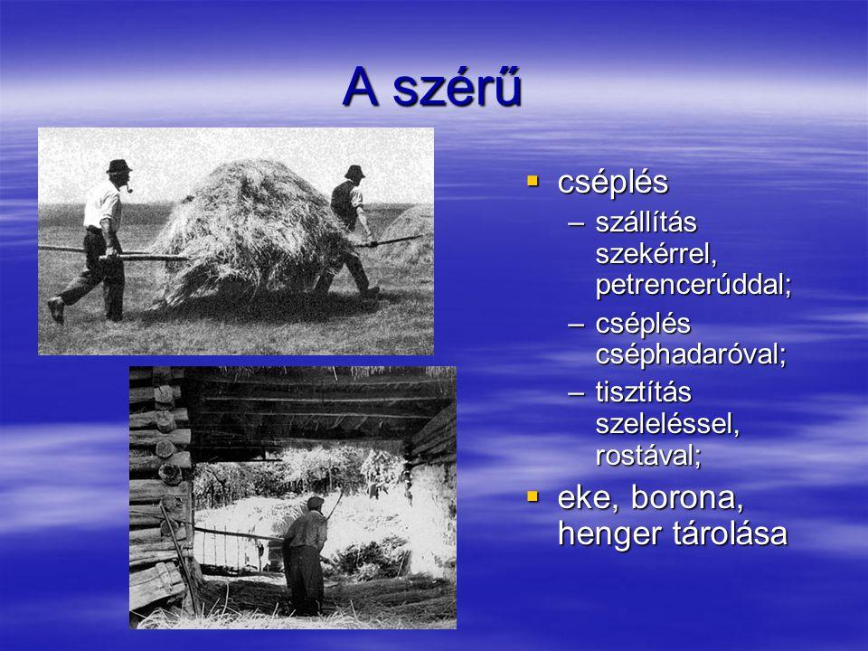Az állatok lakhelye  Istálló –a ház folytatása, vagy különálló épület; –igás-, fejős-, hátasállatoknak  ló (munkaerő),  ökör (munkaerő),  tehén (tej)