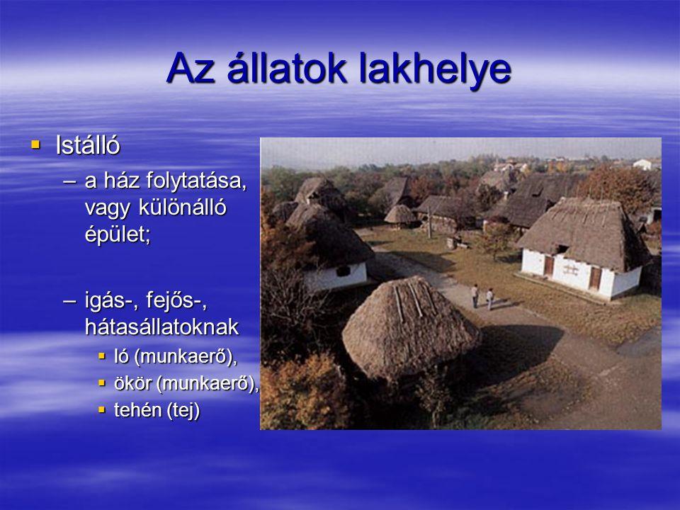 Istálló  Lehetőleg külön istállók –szarvasmarháknak, –lovaknak;  Közvetlen udvari bejárat,  Jászol: etetővályú