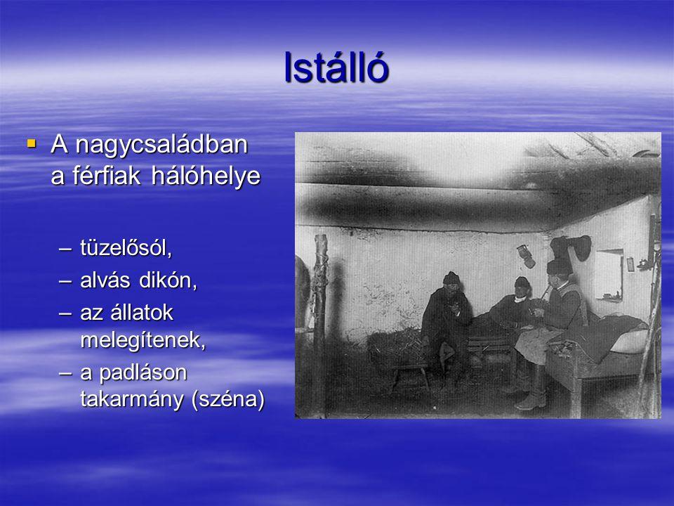 Szénatároló  Széna: –lekaszált, szárított fű, –táplálék, –boglya.
