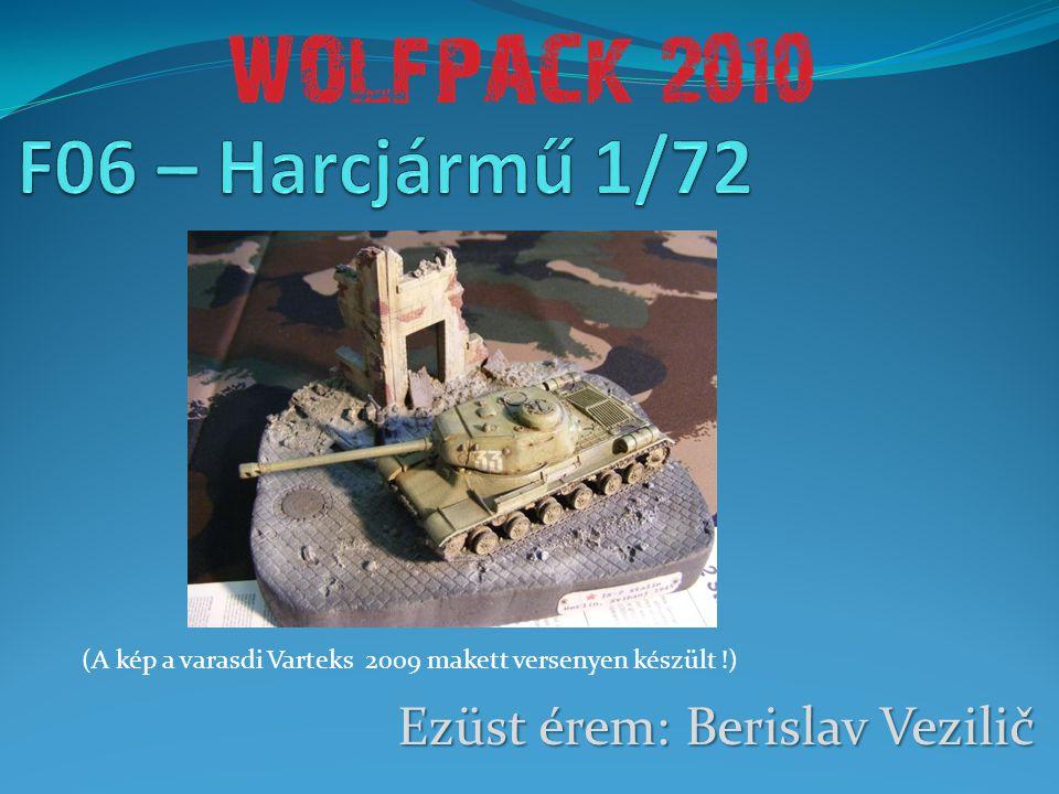 Ezüst érem: Berislav Vezilič (A kép a varasdi Varteks 2009 makett versenyen készült !)