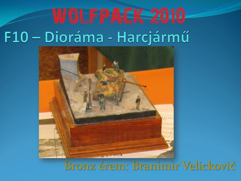Bronz érem: Branimir Velickovič