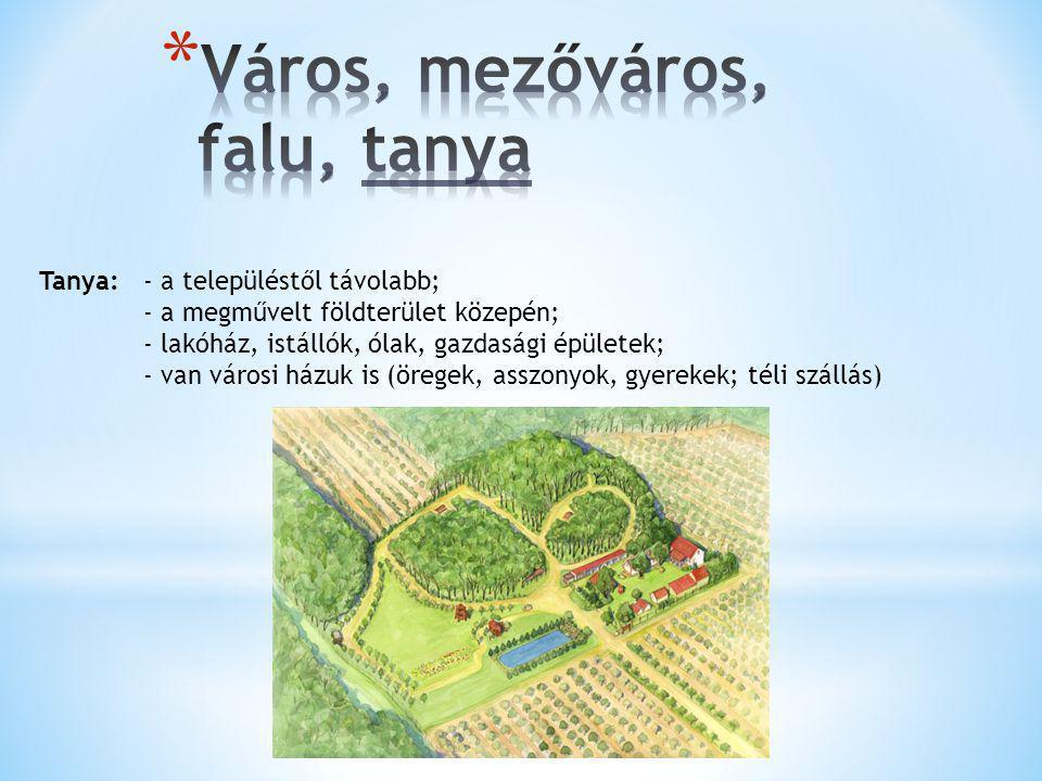 Tanya:- a településtől távolabb; - a megművelt földterület közepén; - lakóház, istállók, ólak, gazdasági épületek; - van városi házuk is (öregek, assz