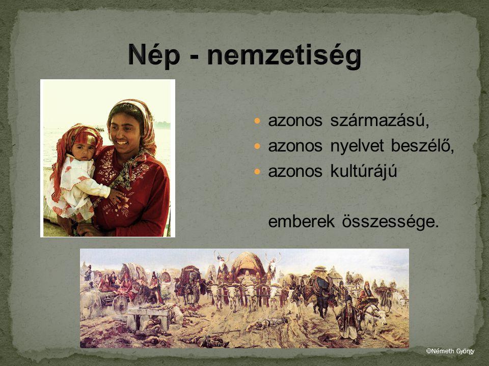 azonos származású, azonos nyelvet beszélő, azonos kultúrájú emberek összessége.  Németh György