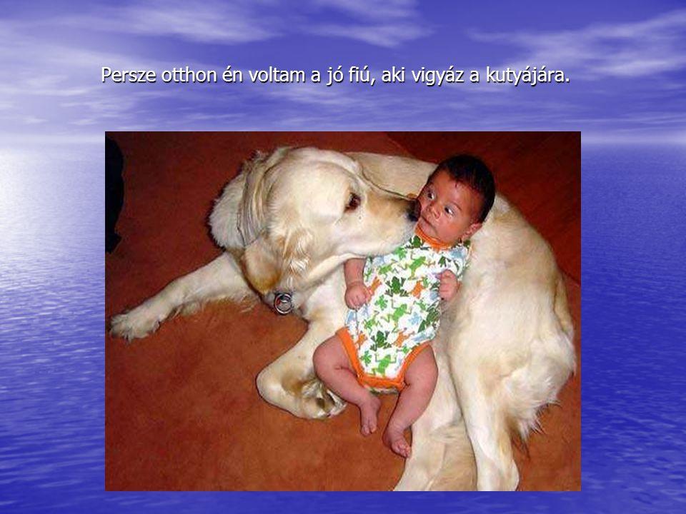 Persze otthon én voltam a jó fiú, aki vigyáz a kutyájára.