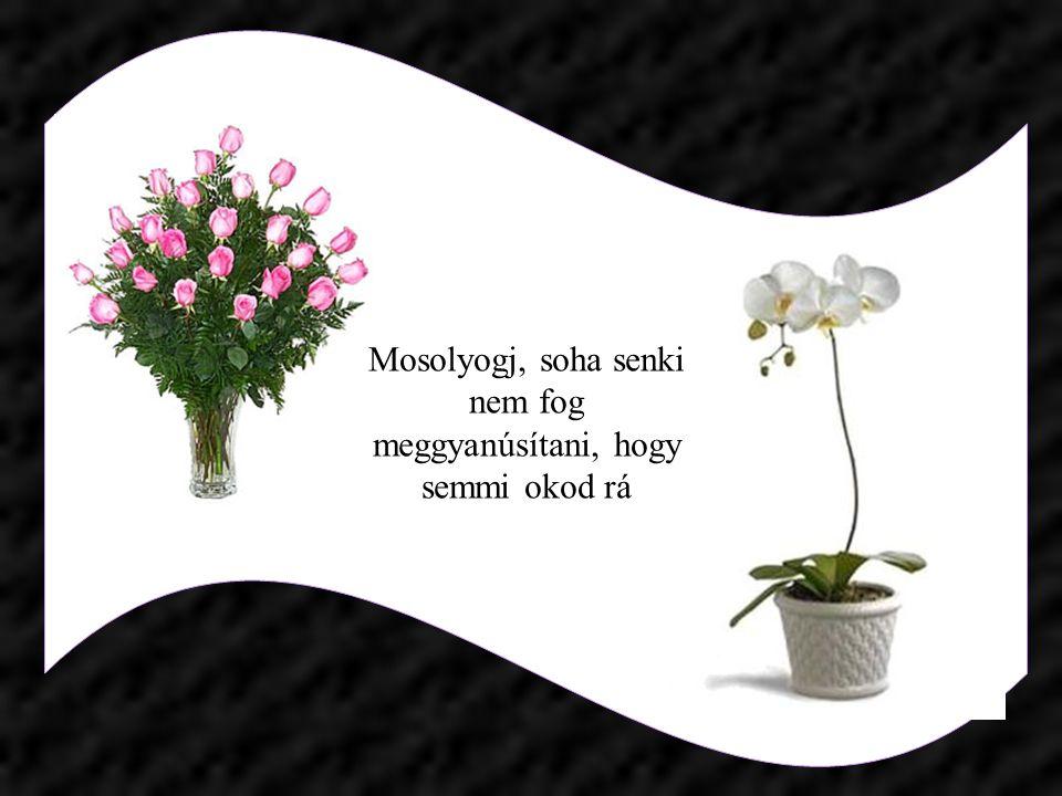 A természet tövisek közé rekeszti a gyenge rózsát, nem azért, hogy szaggassa, hanem, hogy oltalmazza!