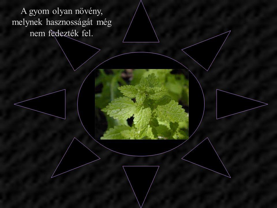 A gyom olyan növény, melynek hasznosságát még nem fedezték fel.