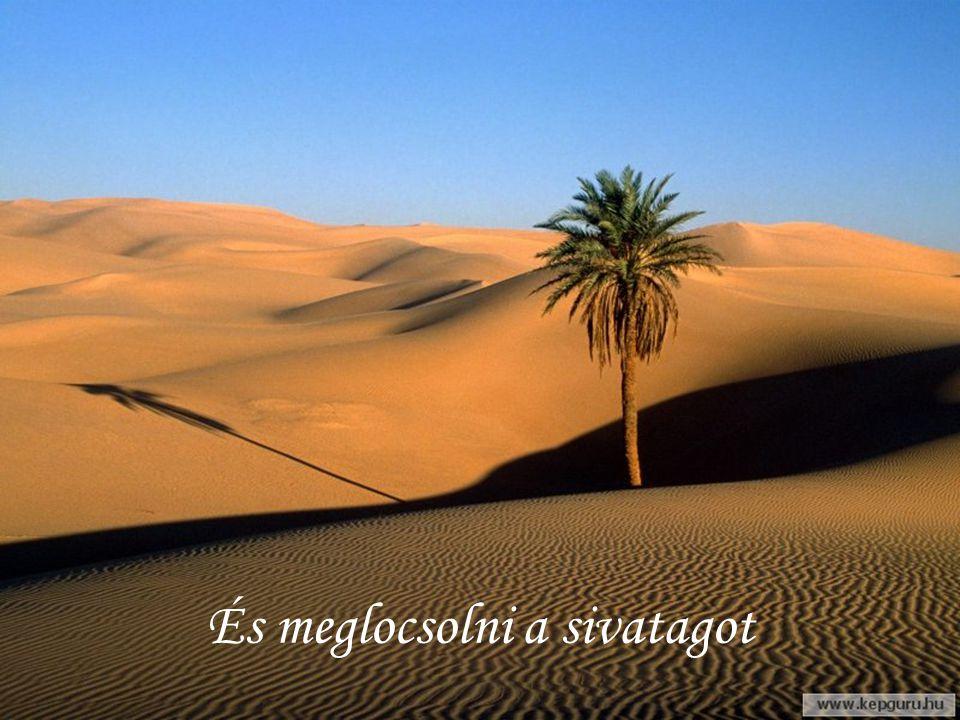 És meglocsolni a sivatagot