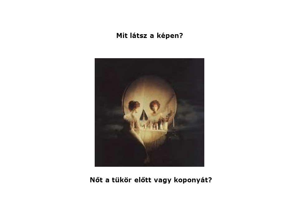 Mit látsz a képen? Nőt a tükör előtt vagy koponyát?
