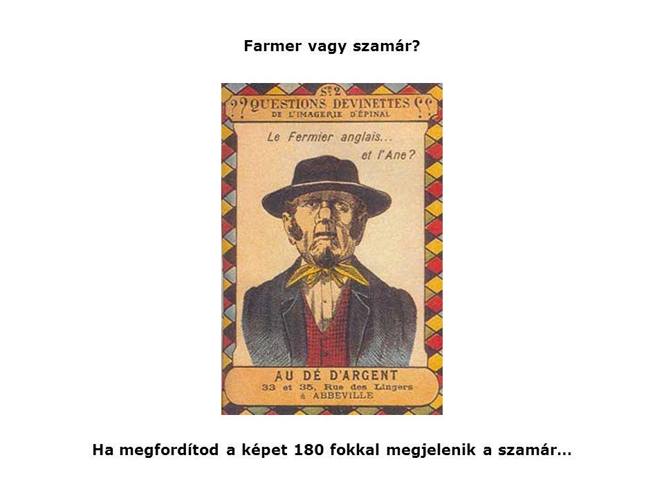 Farmer vagy szamár? Ha megfordítod a képet 180 fokkal megjelenik a szamár…