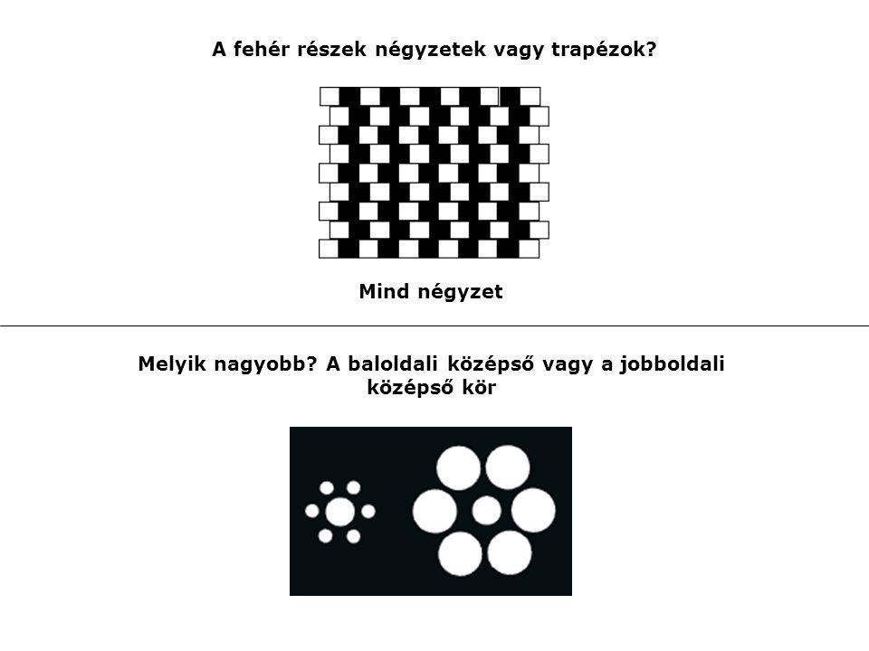 A fehér részek négyzetek vagy trapézok? Mind négyzet Melyik nagyobb? A baloldali középső vagy a jobboldali középső kör