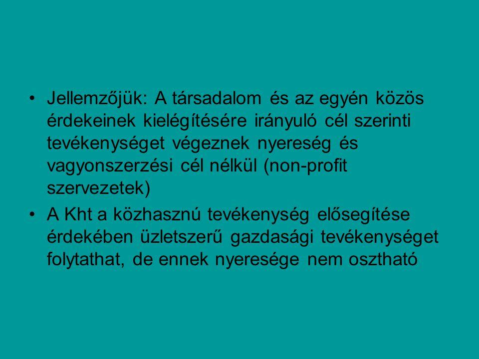 Jellemzőjük: A társadalom és az egyén közös érdekeinek kielégítésére irányuló cél szerinti tevékenységet végeznek nyereség és vagyonszerzési cél nélkül (non-profit szervezetek) A Kht a közhasznú tevékenység elősegítése érdekében üzletszerű gazdasági tevékenységet folytathat, de ennek nyeresége nem osztható
