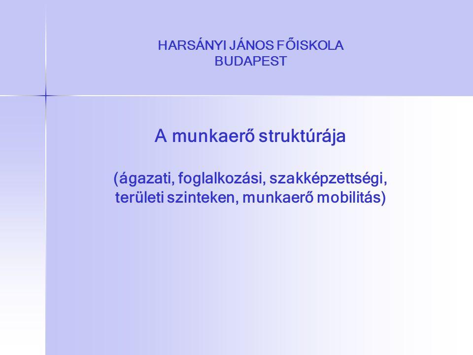 HARSÁNYI JÁNOS FŐISKOLA BUDAPEST A munkaerő struktúrája (ágazati, foglalkozási, szakképzettségi, területi szinteken, munkaerő mobilitás)