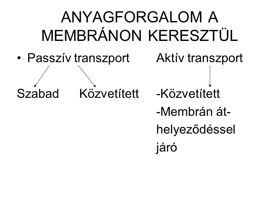ANYAGFORGALOM A MEMBRÁNON KERESZTÜL Passzív transzport Aktív transzport Szabad Közvetített-Közvetített -Membrán át- helyeződéssel járó
