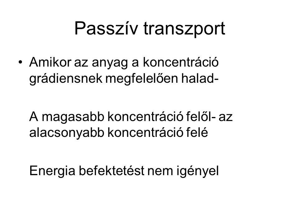 Passzív transzport Amikor az anyag a koncentráció grádiensnek megfelelően halad- A magasabb koncentráció felől- az alacsonyabb koncentráció felé Energ