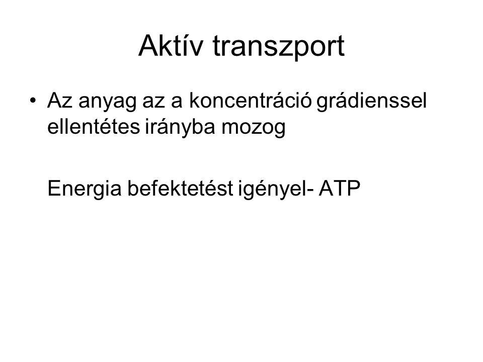 Aktív transzport Az anyag az a koncentráció grádienssel ellentétes irányba mozog Energia befektetést igényel- ATP