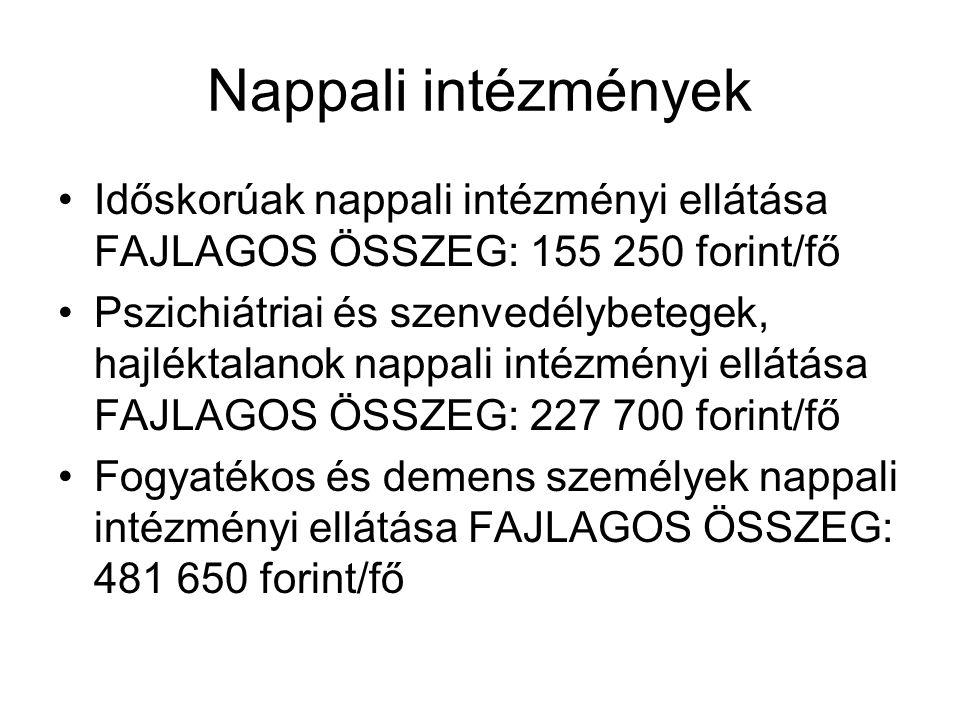 Nappali intézmények Időskorúak nappali intézményi ellátása FAJLAGOS ÖSSZEG: 155 250 forint/fő Pszichiátriai és szenvedélybetegek, hajléktalanok nappal