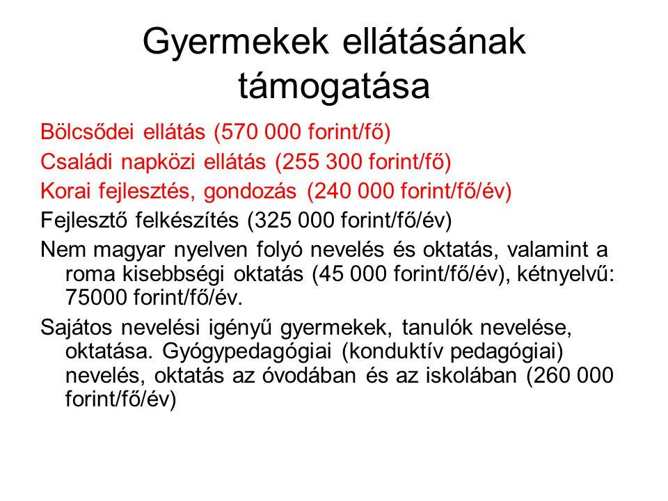 Gyermekek ellátásának támogatása Bölcsődei ellátás (570 000 forint/fő) Családi napközi ellátás (255 300 forint/fő) Korai fejlesztés, gondozás (240 000 forint/fő/év) Fejlesztő felkészítés (325 000 forint/fő/év) Nem magyar nyelven folyó nevelés és oktatás, valamint a roma kisebbségi oktatás (45 000 forint/fő/év), kétnyelvű: 75000 forint/fő/év.