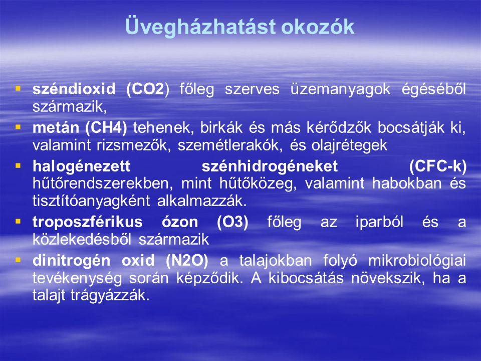 Üvegházhatást okozók   széndioxid (CO2) főleg szerves üzemanyagok égéséből származik,   metán (CH4) tehenek, birkák és más kérődzők bocsátják ki, valamint rizsmezők, szemétlerakók, és olajrétegek   halogénezett szénhidrogéneket (CFC-k) hűtőrendszerekben, mint hűtőközeg, valamint habokban és tisztítóanyagként alkalmazzák.