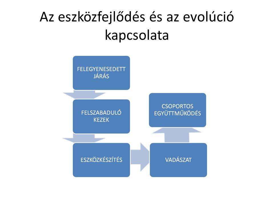 Az eszközfejlődés és az evolúció kapcsolata