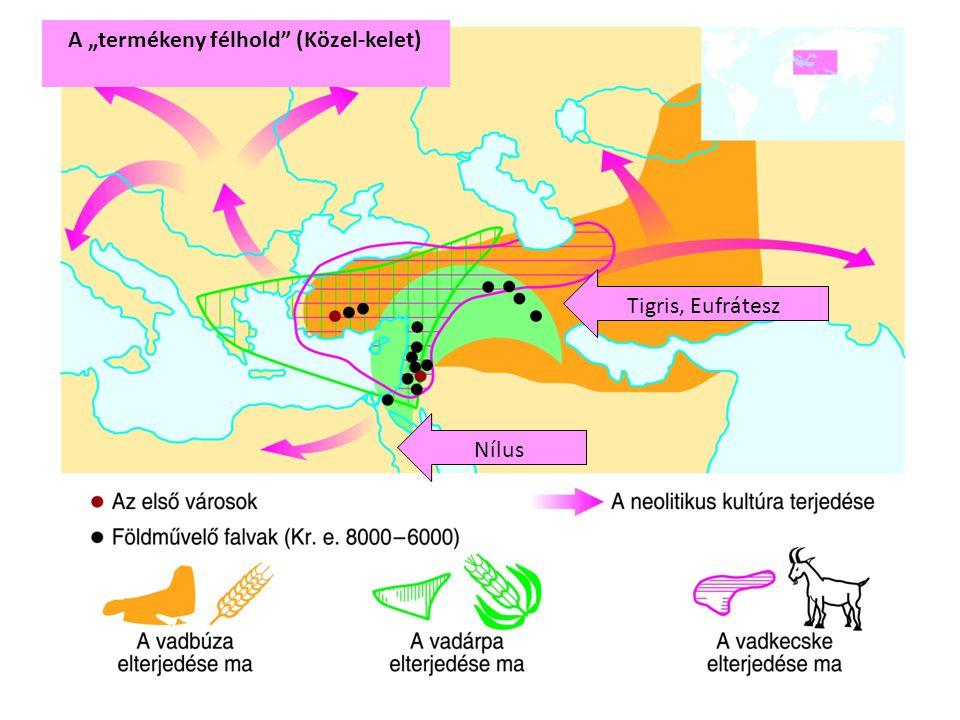"""A """"termékeny félhold"""" (Közel-kelet) Nílus Tigris, Eufrátesz"""
