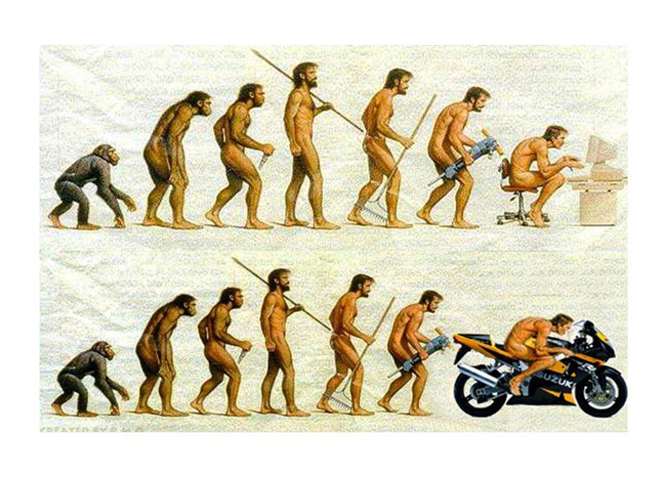 Az emberfélék és az emberszabásúak elkülönülése: 6-5 millió éve Az emberszabású ősmajmok megjelenése: 18-14 millió éve, Afrikában (később továbbvándorolnak Eurázsiába)
