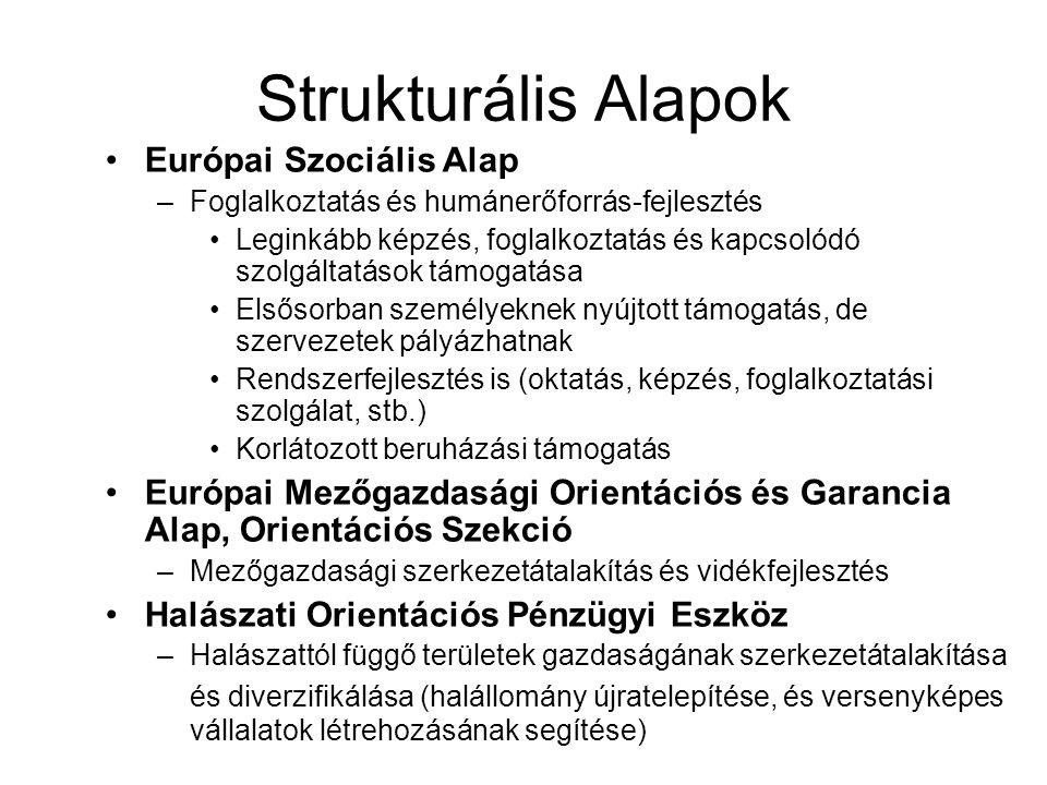 Strukturális Alapok Európai Szociális Alap –Foglalkoztatás és humánerőforrás-fejlesztés Leginkább képzés, foglalkoztatás és kapcsolódó szolgáltatások