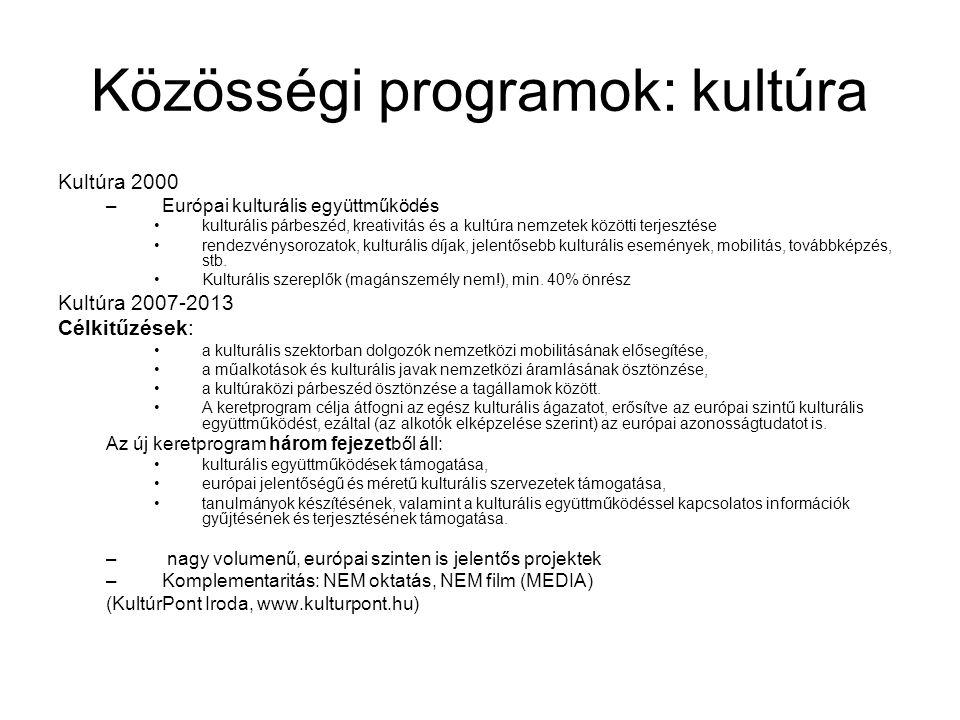 Közösségi programok: kultúra Kultúra 2000 –Európai kulturális együttműködés kulturális párbeszéd, kreativitás és a kultúra nemzetek közötti terjesztés