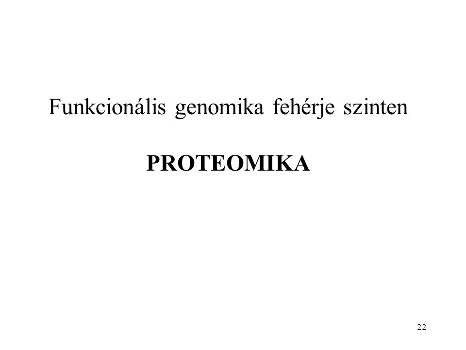 22 Funkcionális genomika fehérje szinten PROTEOMIKA