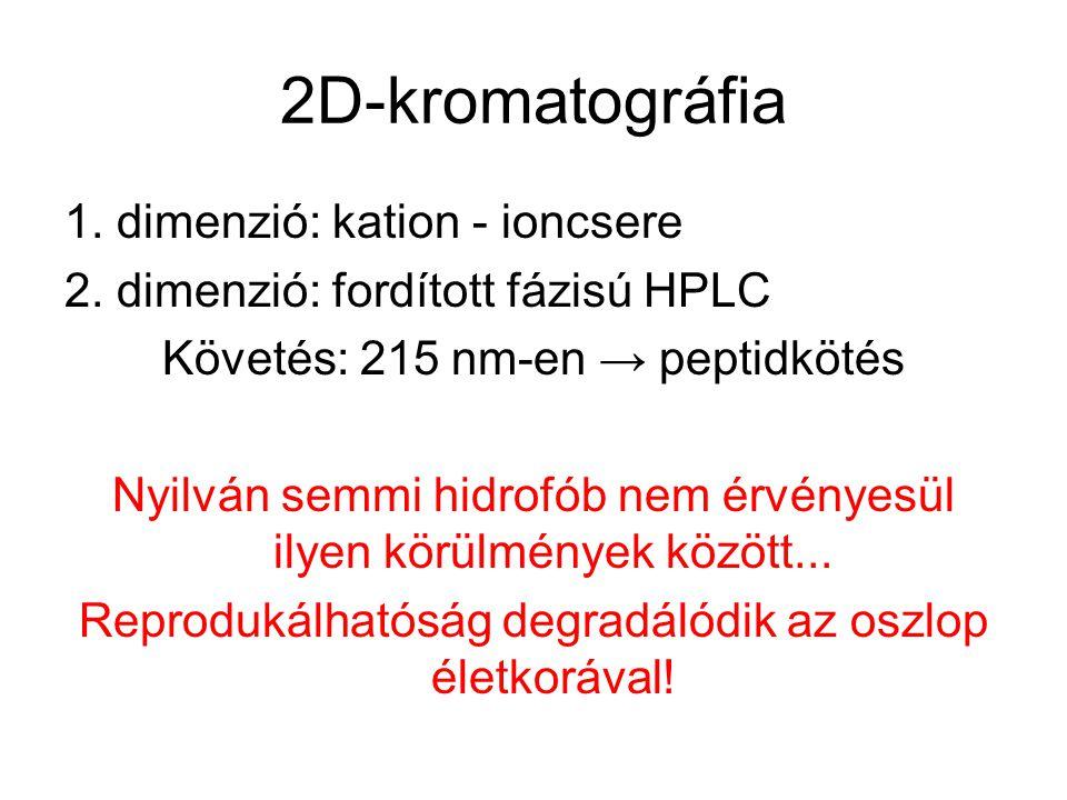 2D-kromatográfia 1. dimenzió: kation - ioncsere 2. dimenzió: fordított fázisú HPLC Követés: 215 nm-en → peptidkötés Nyilván semmi hidrofób nem érvénye