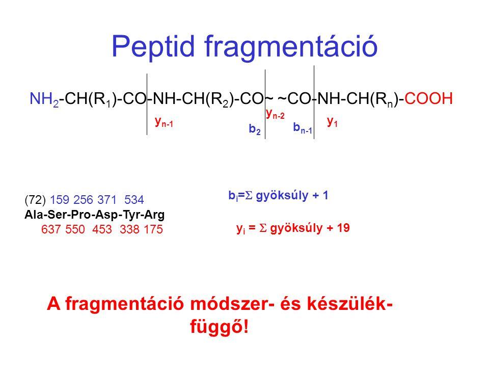 Peptid fragmentáció NH 2 -CH(R 1 )-CO-NH-CH(R 2 )-CO~ ~CO-NH-CH(R n )-COOH y n-1 y1y1 y n-2 b n-1 b2b2 (72) 159 256 371 534 Ala-Ser-Pro-Asp-Tyr-Arg 63