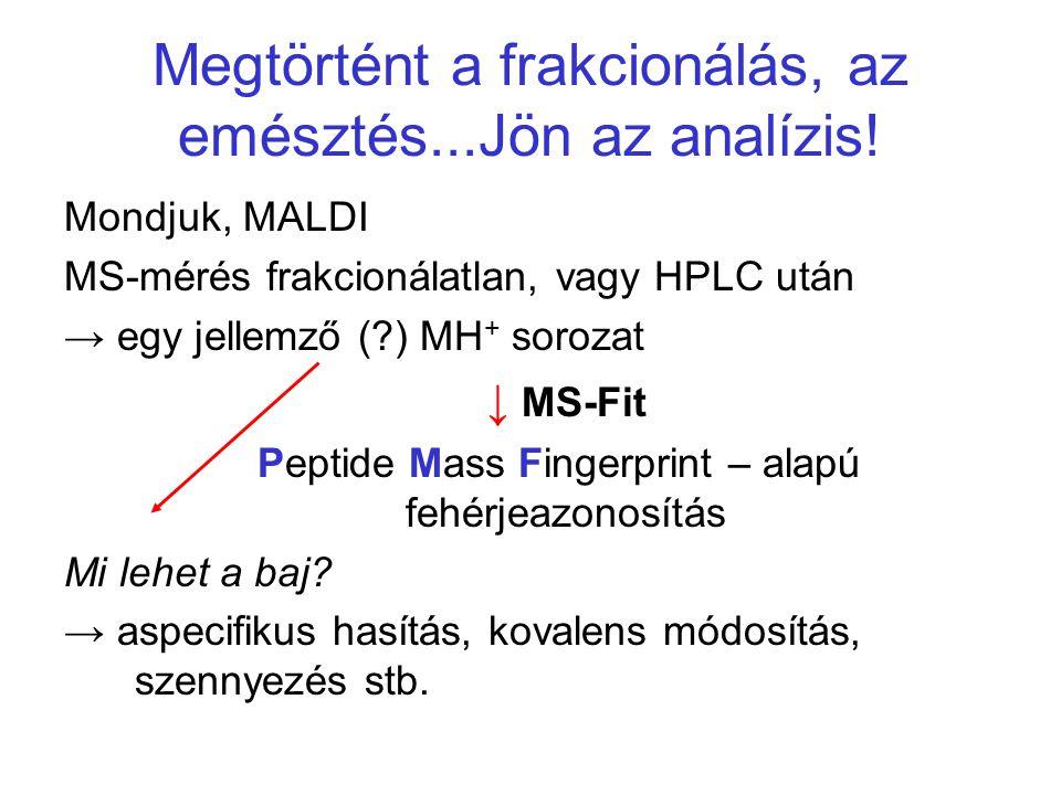 Megtörtént a frakcionálás, az emésztés...Jön az analízis! Mondjuk, MALDI MS-mérés frakcionálatlan, vagy HPLC után → egy jellemző (?) MH + sorozat ↓ MS