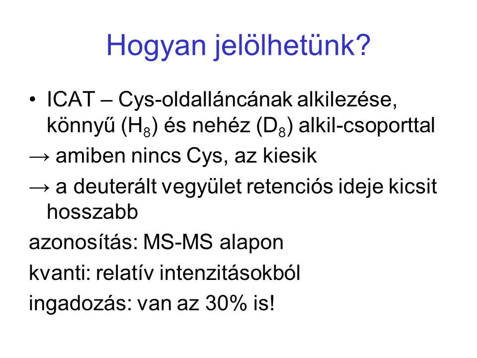 Hogyan jelölhetünk? ICAT – Cys-oldalláncának alkilezése, könnyű (H 8 ) és nehéz (D 8 ) alkil-csoporttal → amiben nincs Cys, az kiesik → a deuterált ve