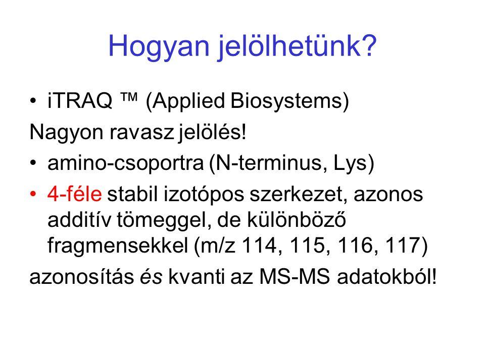 Hogyan jelölhetünk? iTRAQ ™ (Applied Biosystems) Nagyon ravasz jelölés! amino-csoportra (N-terminus, Lys) 4-féle stabil izotópos szerkezet, azonos add