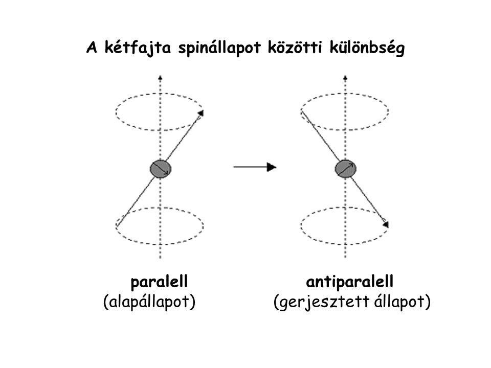A kétfajta spinállapot közötti különbség paralell antiparalell (alapállapot) (gerjesztett állapot)