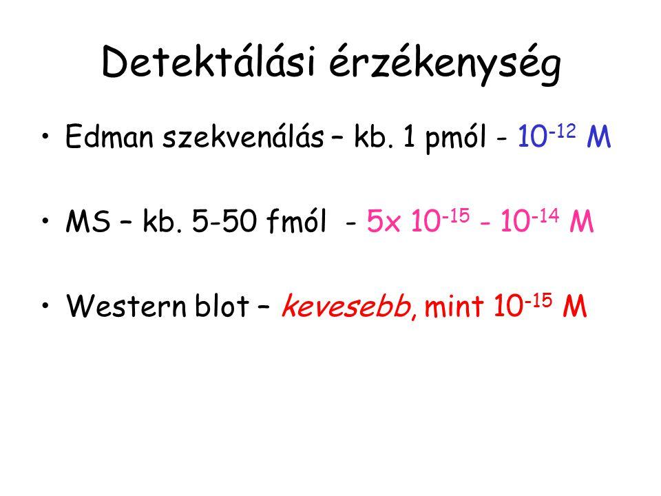 Detektálási érzékenység Edman szekvenálás – kb. 1 pmól - 10 -12 M MS – kb. 5-50 fmól - 5x 10 -15 - 10 -14 M Western blot – kevesebb, mint 10 -15 M