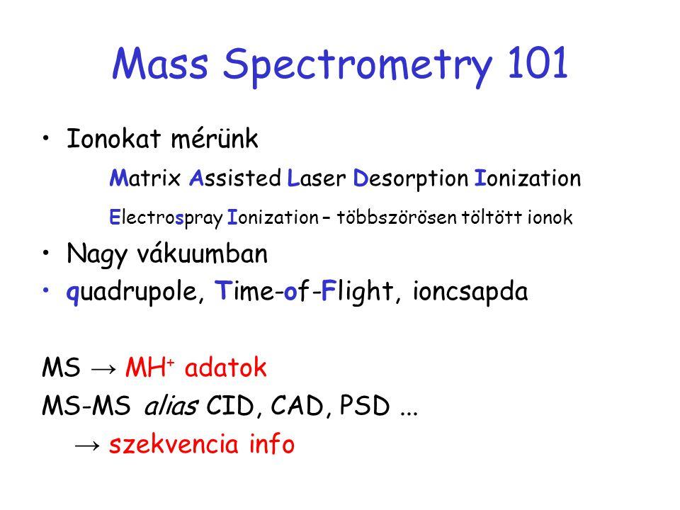 Mass Spectrometry 101 Ionokat mérünk Matrix Assisted Laser Desorption Ionization Electrospray Ionization – többszörösen töltött ionok Nagy vákuumban q