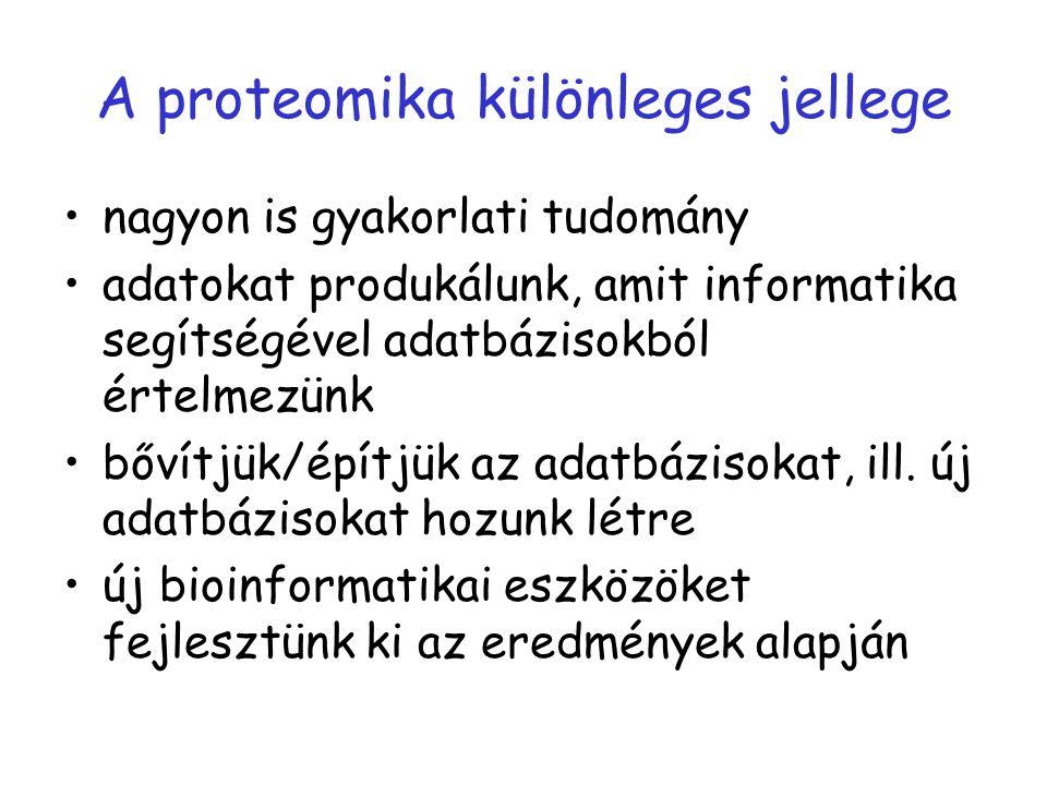 A proteomika különleges jellege nagyon is gyakorlati tudomány adatokat produkálunk, amit informatika segítségével adatbázisokból értelmezünk bővítjük/