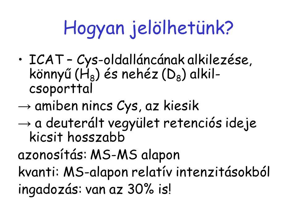 Hogyan jelölhetünk? ICAT – Cys-oldalláncának alkilezése, könnyű (H 8 ) és nehéz (D 8 ) alkil- csoporttal → amiben nincs Cys, az kiesik → a deuterált v