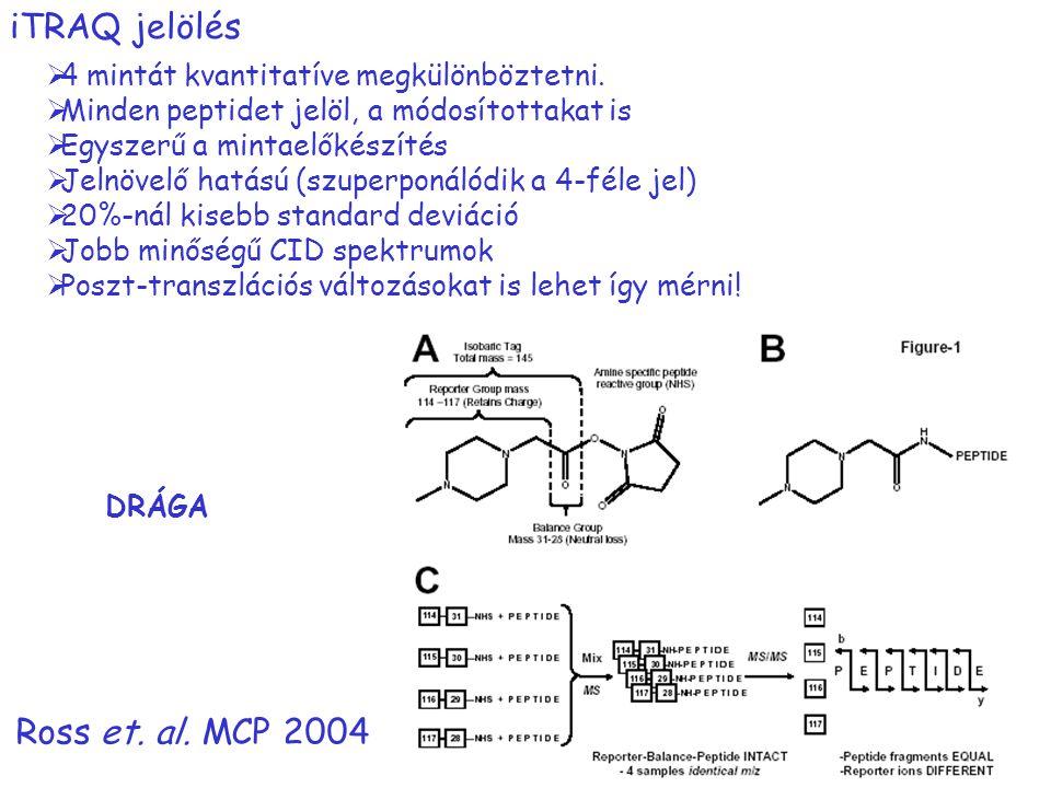 iTRAQ jelölés  4 mintát kvantitatíve megkülönböztetni.  Minden peptidet jelöl, a módosítottakat is  Egyszerű a mintaelőkészítés  Jelnövelő hatású