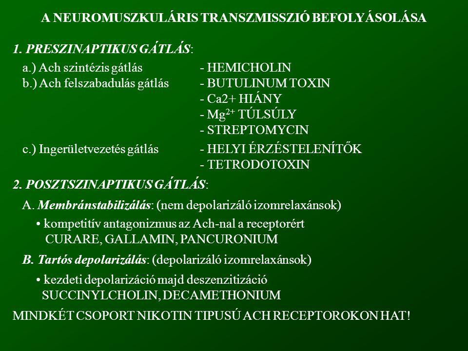 A NEUROMUSZKULÁRIS TRANSZMISSZIÓ BEFOLYÁSOLÁSA 1. PRESZINAPTIKUS GÁTLÁS: a.) Ach szintézis gátlás- HEMICHOLIN b.) Ach felszabadulás gátlás- BUTULINUM