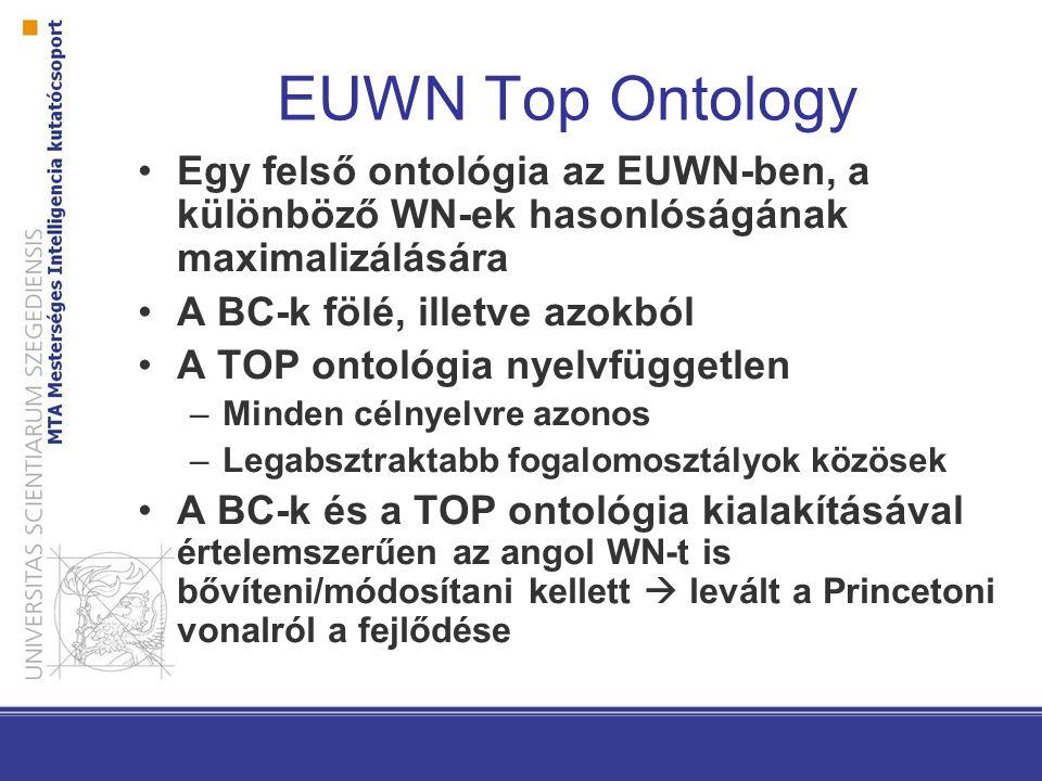 EUWN Top Ontology Egy felső ontológia az EUWN-ben, a különböző WN-ek hasonlóságának maximalizálására A BC-k fölé, illetve azokból A TOP ontológia nyelvfüggetlen –Minden célnyelvre azonos –Legabsztraktabb fogalomosztályok közösek A BC-k és a TOP ontológia kialakításával értelemszerűen az angol WN-t is bővíteni/módosítani kellett  levált a Princetoni vonalról a fejlődése