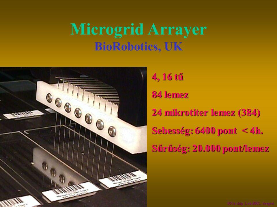 Microgrid Arrayer BioRobotics, UK 4, 16 tű4, 16 tű 84 lemez84 lemez 24 mikrotiter lemez (384)24 mikrotiter lemez (384) Sebesség: 6400 pont < 4h.Sebess