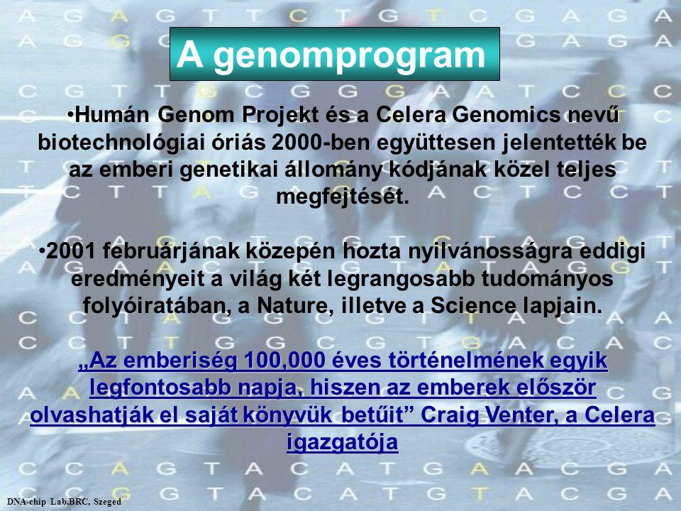 A genomprogram Humán Genom Projekt és a Celera Genomics nevű biotechnológiai óriás 2000-ben együttesen jelentették be az emberi genetikai állomány kód
