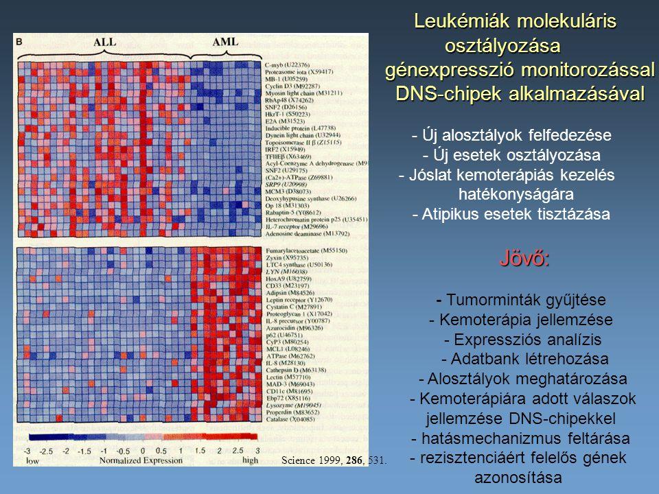 Leukémiák molekuláris osztályozása osztályozása génexpresszió monitorozással génexpresszió monitorozással DNS-chipek alkalmazásával DNS-chipek alkalma