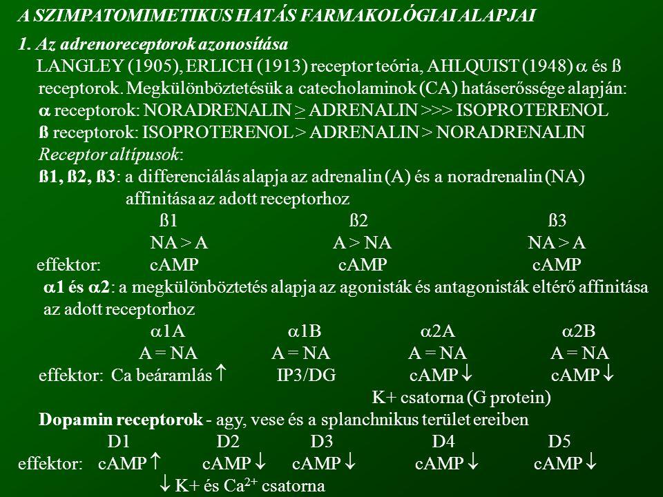 szelektivitás: relatív (koncentráció függvénye) Receptor szelektivitás: relatív (koncentráció függvénye)  agonisták: FENILEFRIN, METOXAMIN  1 >  2 >>>> ß KLONIDIN, METILNORADRENALIN  2 >  1 >>>> ß  és ß agonisták:  és ß agonisták: NORADRENALIN  1 =  2; ß1 >> ß2 ADRENALIN  1 =  2; ß1 = ß2 ß agonisták:ISOPROTERENOLß1 = ß2 >>>>  DOBUTAMINß1 > ß2 >>>>  TERBUTALIN, ALBUTEROL stbß2 >> ß1 >>>  2.