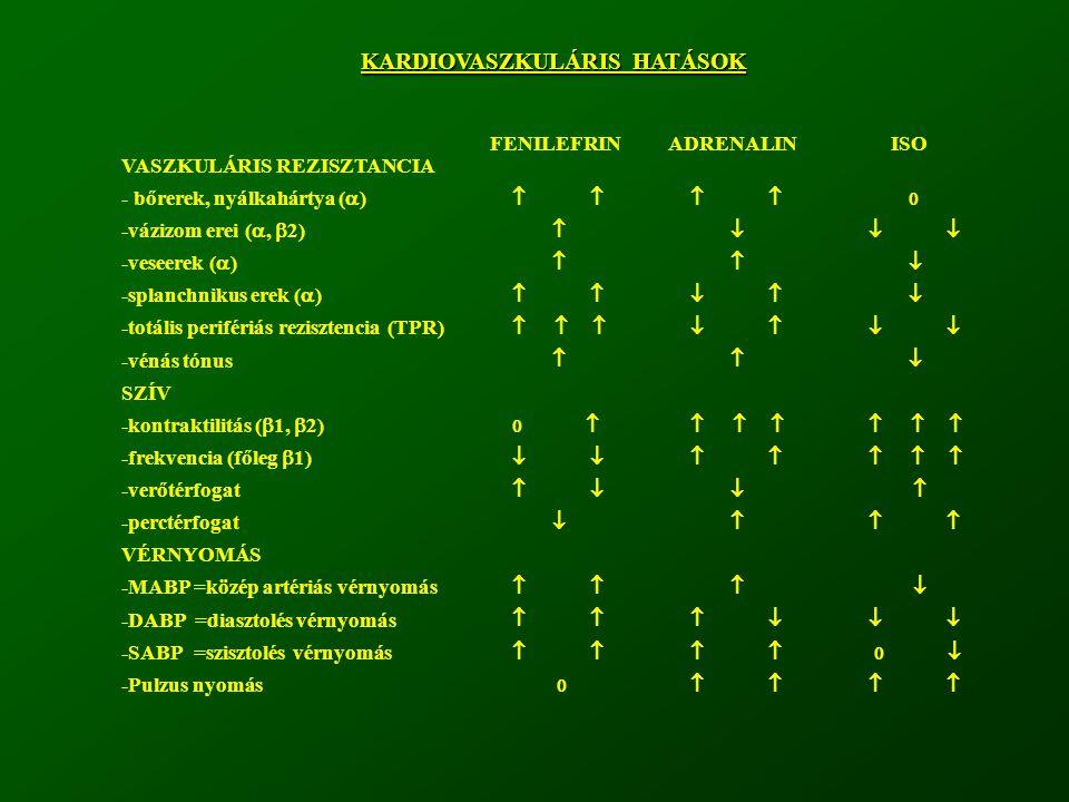 KARDIOVASZKULÁRIS HATÁSOK VASZKULÁRIS REZISZTANCIA - bőrerek, nyálkahártya (  ) -vázizom erei ( ,  2) -veseerek (  ) -splanchnikus erek (  ) -tot