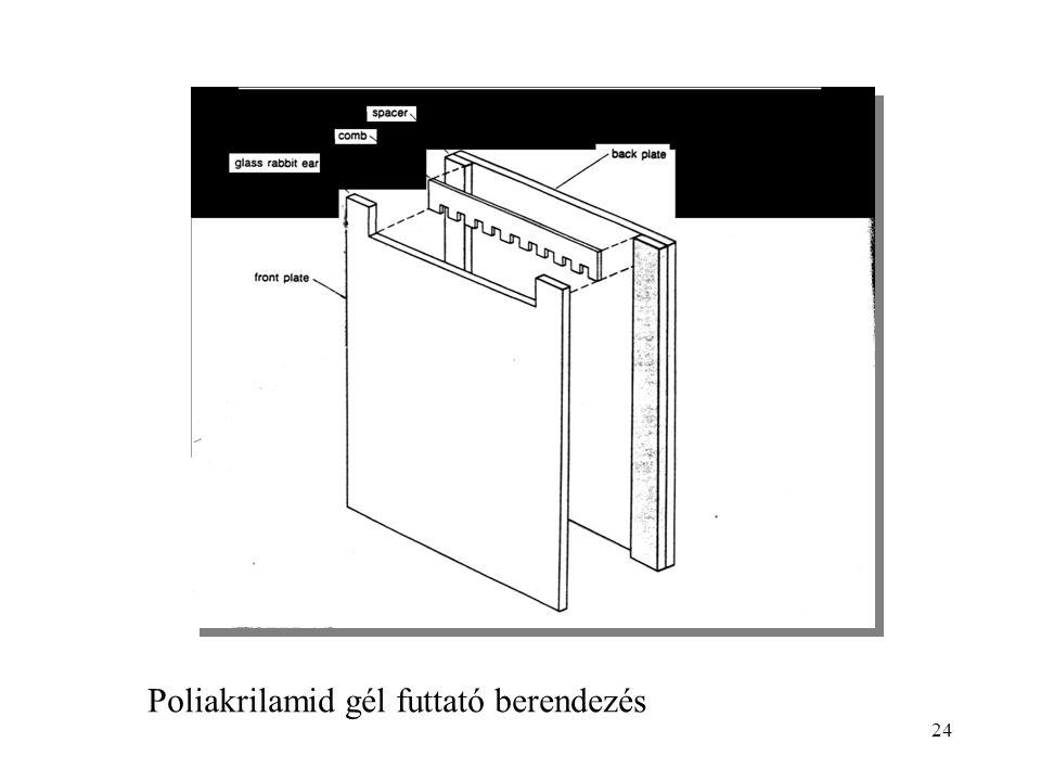 24 Poliakrilamid gél futtató berendezés
